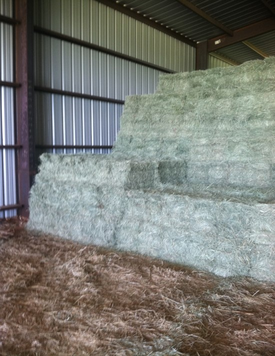 Inside of barn showing hay bales